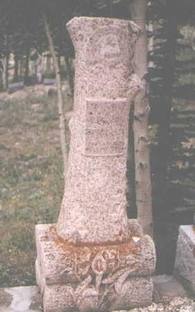 SEAY, CECIL - San Juan County, Colorado   CECIL SEAY - Colorado Gravestone Photos