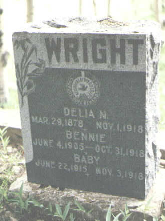 WRIGHT, DELIA N. - San Juan County, Colorado | DELIA N. WRIGHT - Colorado Gravestone Photos