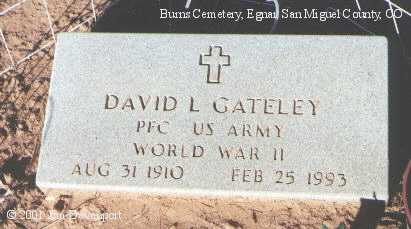 GATELY, DAVID L. - San Miguel County, Colorado | DAVID L. GATELY - Colorado Gravestone Photos