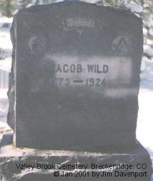 WILD, JACOB - Summit County, Colorado | JACOB WILD - Colorado Gravestone Photos