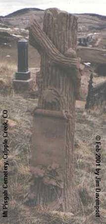 CLARK, ELIM T. - Teller County, Colorado | ELIM T. CLARK - Colorado Gravestone Photos