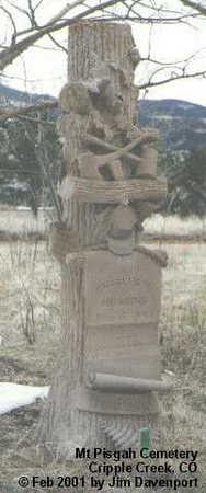 HUGGINS, CHARLES H. - Teller County, Colorado | CHARLES H. HUGGINS - Colorado Gravestone Photos
