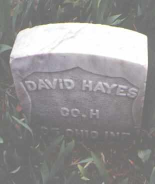 HAYES, DAVID - Yuma County, Colorado | DAVID HAYES - Colorado Gravestone Photos